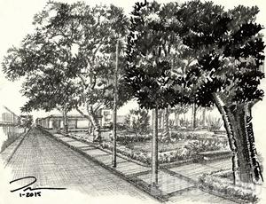 86. Jardín de Cholula
