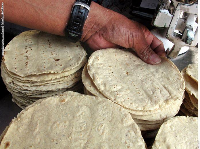 Tortilleros sostienen el precio de la tortilla
